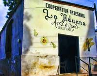 Artists' Cooperative in La Aduana