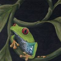 frog3 Art Prints & Posters by Rachelle Dannible