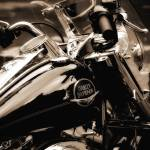 """Harley-Davidson"" by True_Lens"