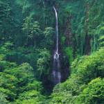 """""""San Fernando Falls Costa Rica"""" by rdwittle"""