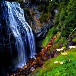 """Narada Falls Mount Rainier Natl Forest"" by rdwittle"