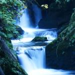 """Quinault Waterfall"" by rdwittle"