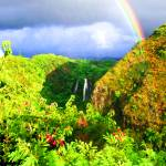 """Rainbow Over Opaekaa Falls Kauai Hawaii"" by rdwittle"