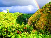 Rainbow Over Opaekaa Falls Kauai Hawaii
