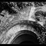 """""""Old splendor"""" by cdepaz"""