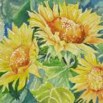 """""""Sunflowers"""" by lindahaile"""