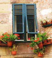 A window framed with green shutters and flowers