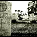 """Commonwealth graveyard, Fayed, Egypt."" by shazly"