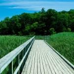 """""""Boardwalk"""" by JSHollands"""