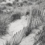 """fence and dunes"" by lwoodburn"