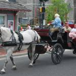 """""""carriage ride"""" by lwoodburn"""