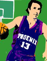 Steve Nash Shadow Color