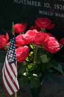 Memorial Day Roses in Arlington Cemetery
