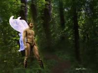 Fantasy Fairy in the Woods 2