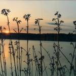 """Hendersen Bay Sunset"" by McHenryDesigns"