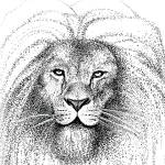 """Lion"" by McHenryDesigns"