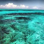 """Half moon Cay"" by scottMacKayphotography"