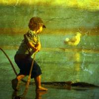 The Boy & the Imaginary Gull