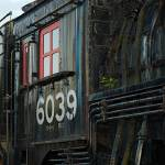 """6039 with Plant Take 2"" by PaulDRobertson"