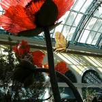 """Bellagio Conservatory - by mike_ch"" by VegasMediaGroup"