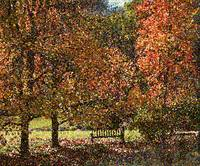 Fall Trees Seurat