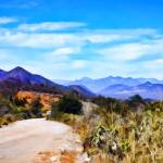 """Desertscape on the Road to Piedras Verdes #1"" by johncorney"