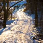 """Snowy Country Lane"" by CEMiller"