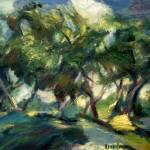"""Tree Shadows"" by dornberg"