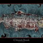 """The Chinook Brook"" by KameraKat"