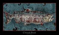 The Chinook Brook