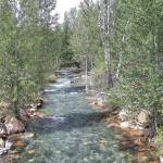 """Wolf Creek"" by peacelane"