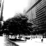 """Downtown Toronto"" by cedricthephotographer"