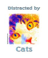 Distracted by Cats