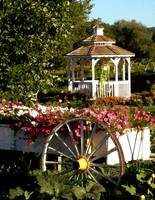 Flower cart at the gazebo