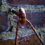 """""""Hook"""" by marcmmp"""