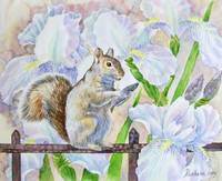 The Squirrel and Flowers