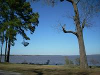 Lake Houston