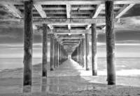 Under the Suffolk Boardwalk
