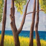 """""""Trees at Northport Michigan"""" by pfleghaar"""