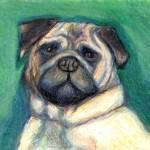 """""""Pug"""" by VanAntwerpArt"""