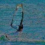 """Windsurfing"" by Bob_Wall"