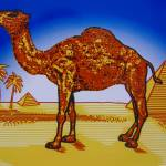 """CAMEL Sign - Roswell, New Mexico"" by oilboy"