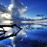 """WATER REFLECTION PALAU"" by bronco"