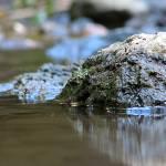 """""""River Rock"""" by blakjakdavy"""