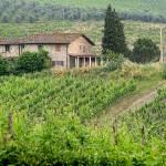 """""""Italian Wine Country"""" by blakjakdavy"""