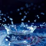 """Splash"" by jpat"
