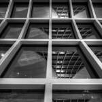 """Languid Layover Lattice (BW Color Dodge Portrait V"" by jonsheer"
