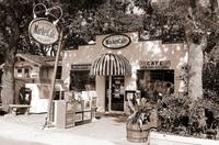 The Village Market (Seagrove, 30A)