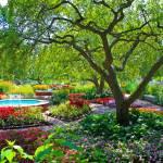 """""""Public Gardens 1"""" by baja02"""