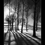 """""""Imagekind"""" by alishokri"""